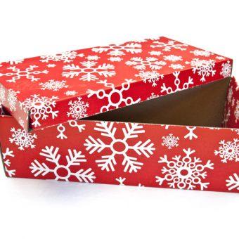 Die cut packaging 06