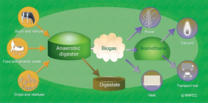 anaerobic-digestion-how_it_works